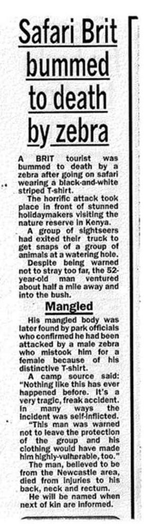 bummed to death zebra
